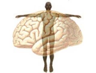 psicomatica bioenergetica